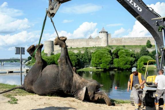 Medi heises opp og fraktes bort. Foto: Imgur/Thumser. Se flere bilder: http://imgur.com/a/Z9ZuQ